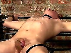 Filipino star gay porn The arrival of sausage loving torment