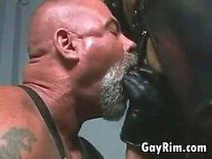 Bikers homosexuales en cuero de