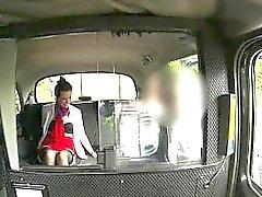 Do stewardess excitado namibian no banco traseiro pela estranha perverso