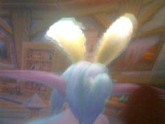 noche conejito duende zorra nymi se cansa de una zanahoria y postre!