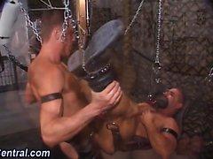 Guy bareback in sex swing