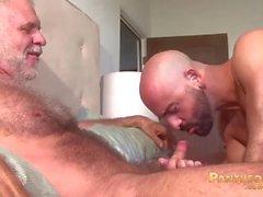 Seksikäs Trick Daddies Allen Silver ja Adam Russo Fuck toisiaan sänky