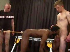 svart homosexuell knuten till bänken