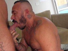 Ja Alessio Romero hoitelee ja Alex vapaamuurari satulaa