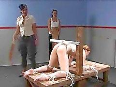 Braut 152 060 views