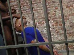 prigioniero bianco cavalca bbc