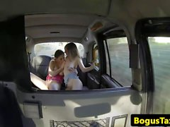 Pussyloving babes scissoring in back of taxi