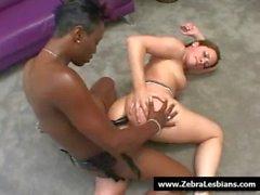 Zebra Lesbians - Nasty ebony babes love strap-on fuck 07