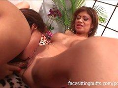 Enormt lesbisk porn orgien i massor av Big Tits samt orgasm