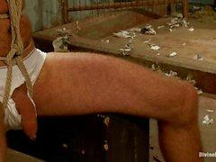 Aiden Starr ve The Drake Tapınağı kirli oyunlar