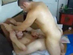 Gallo volgare fucking ass