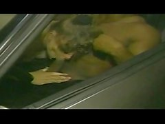 Classic BBW Whitney Valentine 2 (Ray Victory)