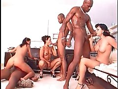 Black On Brunette Orgy!