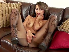 Glam dark brown Chelsea French in revealing darksome hose
