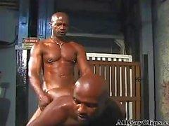 Achs Homosexuell Porno