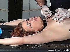 As punições de rack Escravidão e agulha de tortura tit