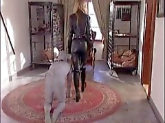 Dominatrix Kennel Del 2
