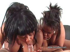 Black BBWs enjoy a cock together