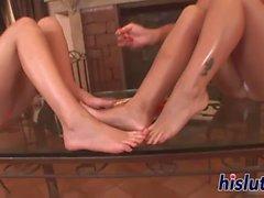 Dois lindos méis lamber uns aos outros é pés