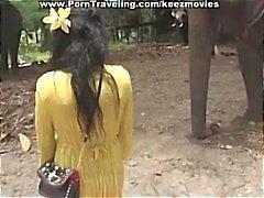 Brunette babe krijgt gezicht neuken door olifant black dick gaat dan om de olifanten te bezoeken