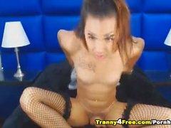 Hot Sexy Tranny Babe Seductively Masturbating