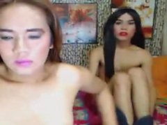 Two Hot Shemale Have Fun Together