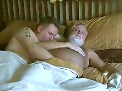 despertar oso del papá