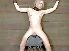 BDSM sub attaché à une sybian