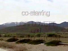 Noivas Backdoor # 2 The Honeymoon - 1986