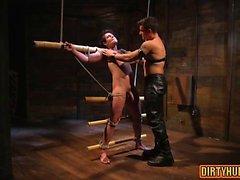 Muscular dominación homosexuales y facial