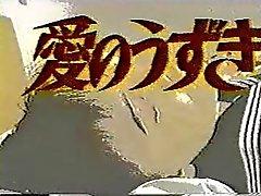 Japanese classic : Ai no usagi