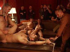 Die junge Alphas Porno Musik Video Compilation