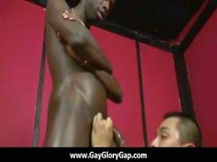 Omosessuali Porno Buco glorioso il sesso porno e cattivi handjob allegro quindici