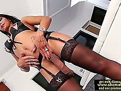Solo shemale amateur in lingerie tugs her thick cock