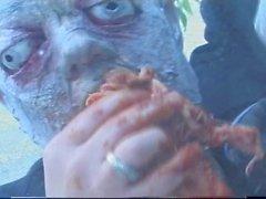 El ataque Zombie N15
