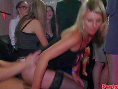 Real amateur euro sluts blow strippers