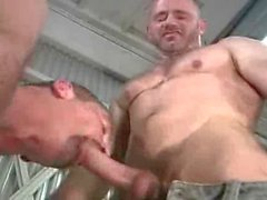 porno gay blake nolan