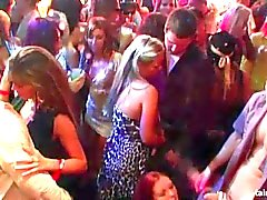 Bi chicas follando pollas en la fiesta salvaje