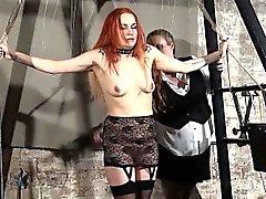 Redhead delici köl Mary oynamak