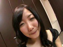 Tüylü Amatör Asya Kedi Japonca