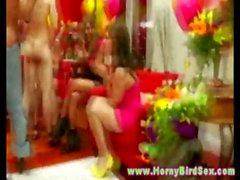 Benim üzerime güzel kadınları heyecanla bekârlığa veda parti yarak emme