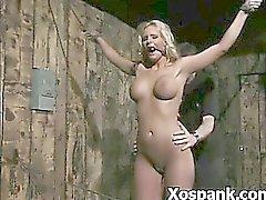 Juicy Spanking Selvagem Cadela Em de BDSM