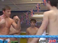 Hübsche junge Männer, die ihre Muskelkraft im Ring prüfen