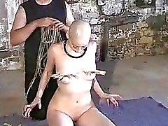 Kumimonsters asiática escravidão em de pena e alcatrão