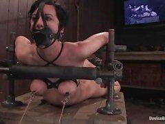 Cerezo Desgarrado atados y amordazados mientras que tener pezones sacaron la tortura