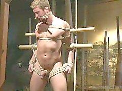 Connor Maguire bekommt seinen Arsch Violated - Szene 1