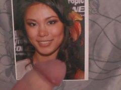 Archivio facciale per ragazza splendida di asiatica.