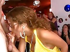 Cute menina recebe seu bichano