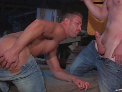 RagingStallion Ryan Rose u Andrew Stark