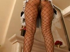 Alexis Amore Latina Maid Anal Po...